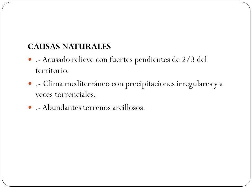 CAUSAS NATURALES.- Acusado relieve con fuertes pendientes de 2/3 del territorio.