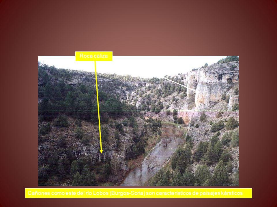 Roca caliza Cañones como este del río Lobos (Burgos-Soria) son característicos de paisajes kársticos.
