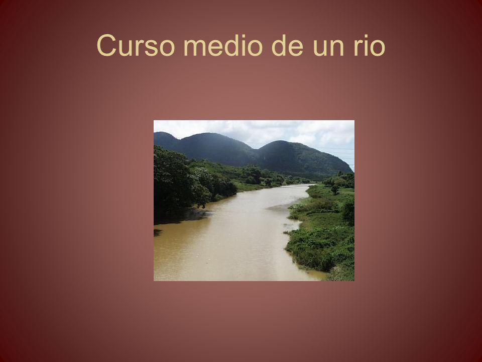 Curso medio de un rio
