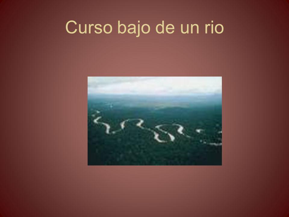 Curso bajo de un rio