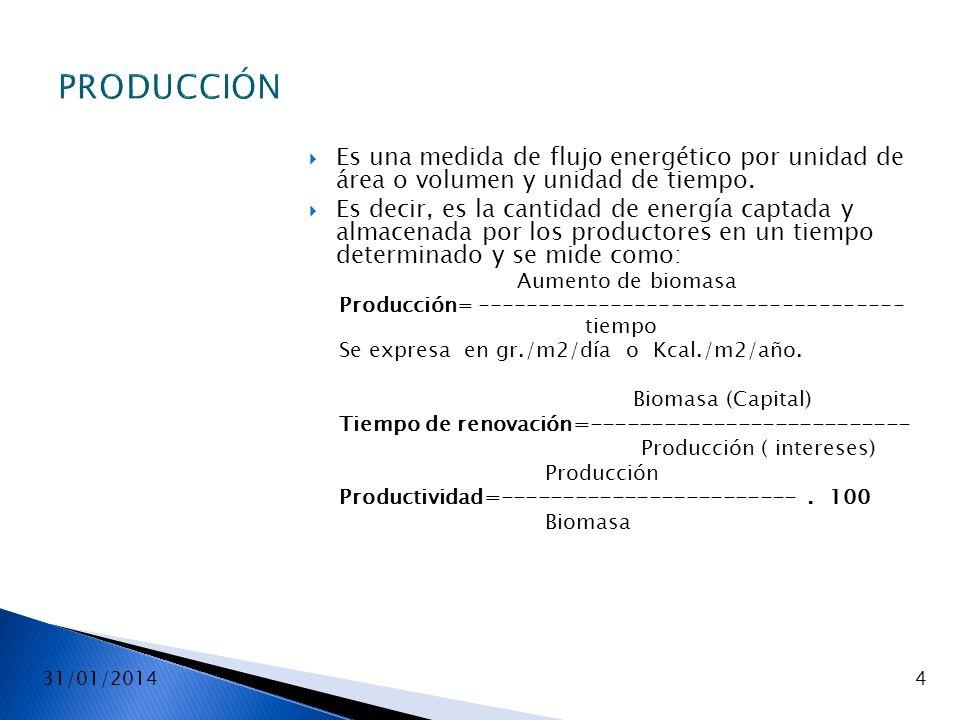 PRODUCCIÓN Es una medida de flujo energético por unidad de área o volumen y unidad de tiempo.