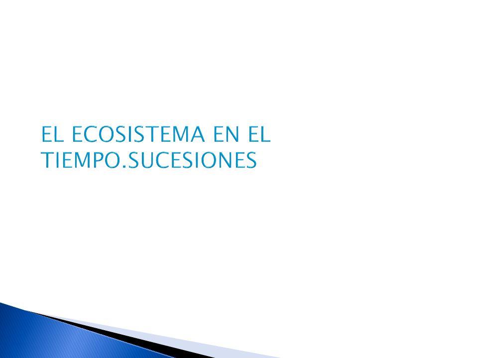 EL ECOSISTEMA EN EL TIEMPO.SUCESIONES