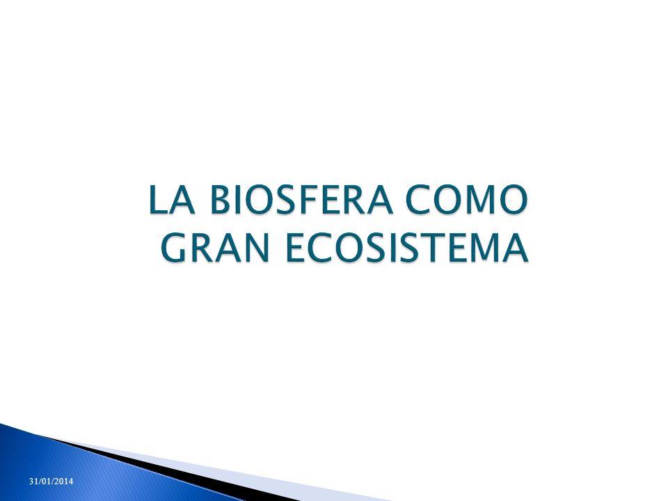 LA BIOSFERA COMO GRAN ECOSISTEMA