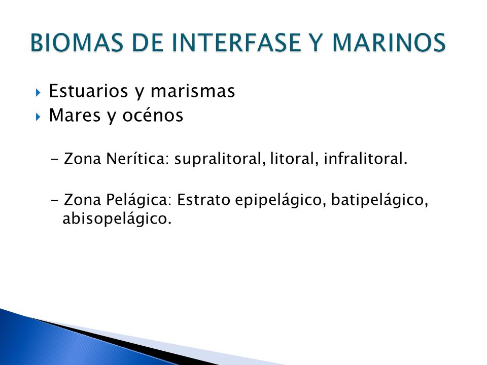 BIOMAS DE INTERFASE Y MARINOS