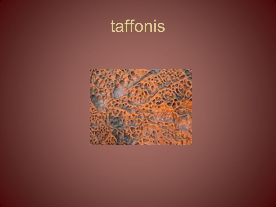 taffonis