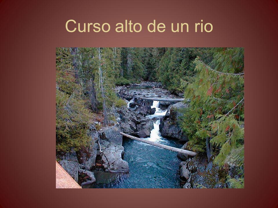 Curso alto de un rio