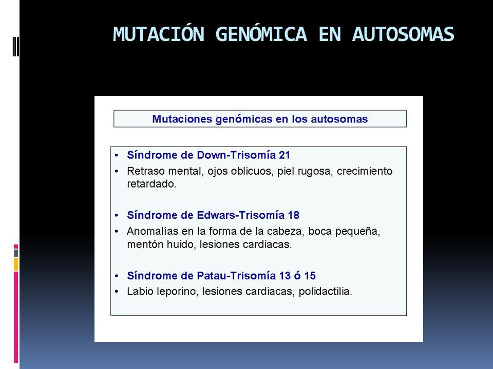 MUTACIÓN GENÓMICA EN AUTOSOMAS