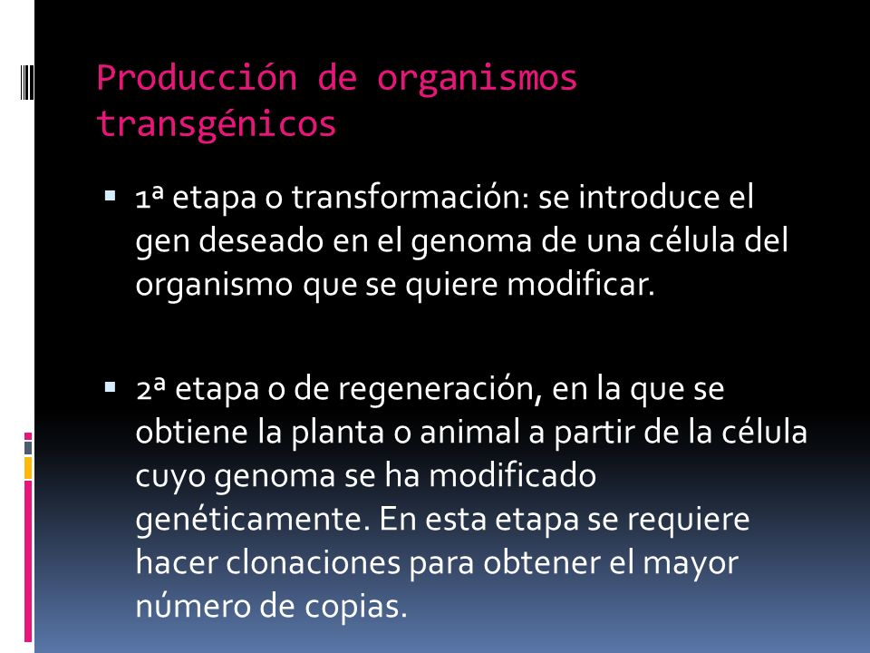 Producción de organismos transgénicos