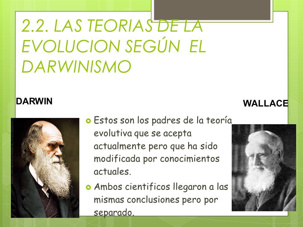 2.2. LAS TEORIAS DE LA EVOLUCION SEGÚN EL DARWINISMO