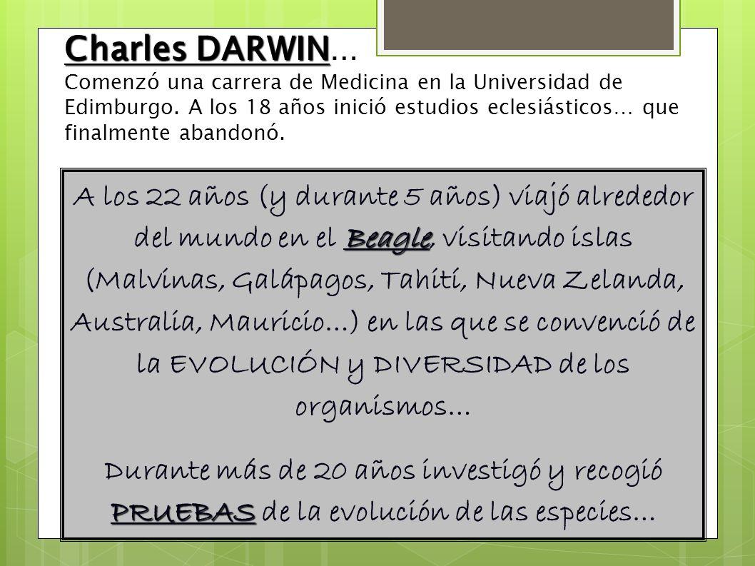 Charles DARWIN… Comenzó una carrera de Medicina en la Universidad de Edimburgo. A los 18 años inició estudios eclesiásticos… que finalmente abandonó.