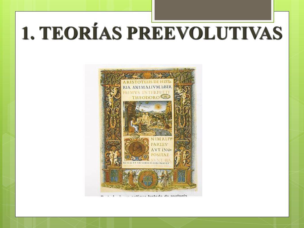 1. TEORÍAS PREEVOLUTIVAS