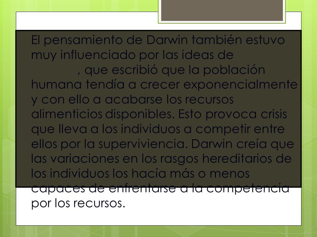 El pensamiento de Darwin también estuvo muy influenciado por las ideas de Thomas Malthus, que escribió que la población humana tendía a crecer exponencialmente y con ello a acabarse los recursos alimenticios disponibles.