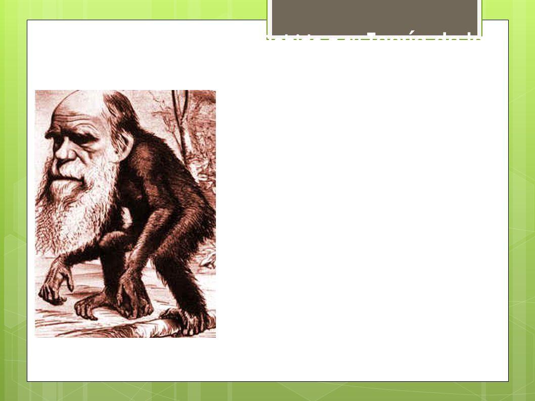Debido a su Teoría de la evolución y, especialmente, a sus ideas que ponían de manifiesto la relación evolutiva entre el hombre y el resto de los primates, Darwin ha sido frecuentemente parodiado… y, además, desató una gran polémica no sólo científica, sino también social.