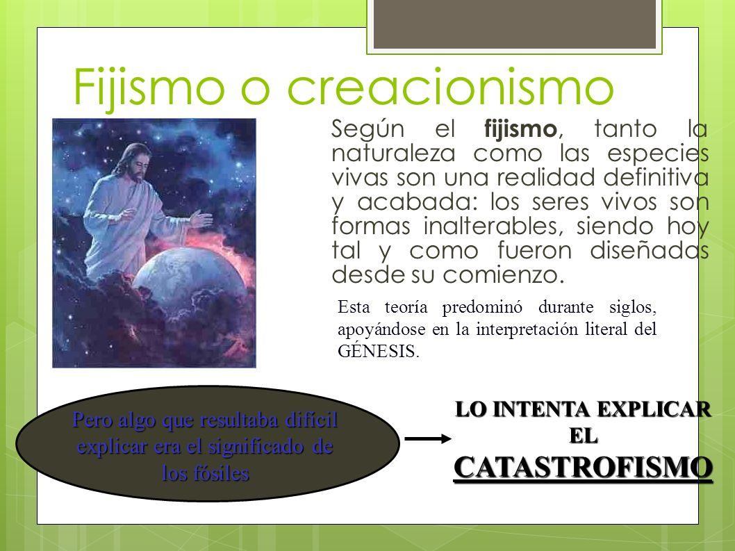 Fijismo o creacionismo