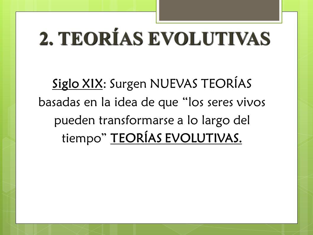 2. TEORÍAS EVOLUTIVAS