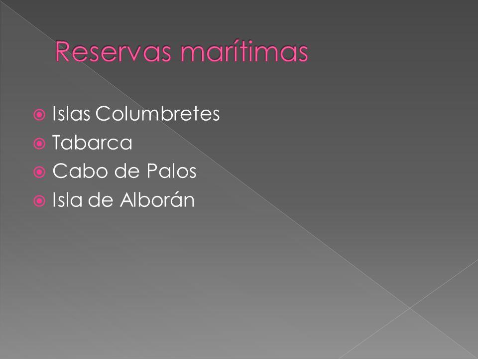 Reservas marítimas Islas Columbretes Tabarca Cabo de Palos