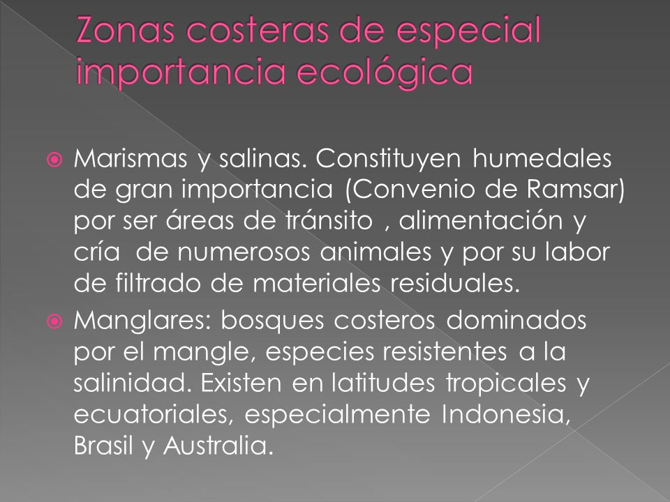 Zonas costeras de especial importancia ecológica