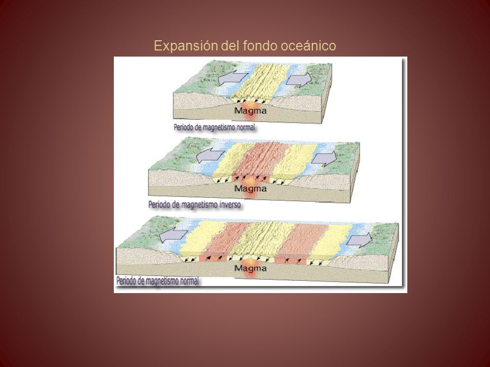 Expansión del fondo oceánico