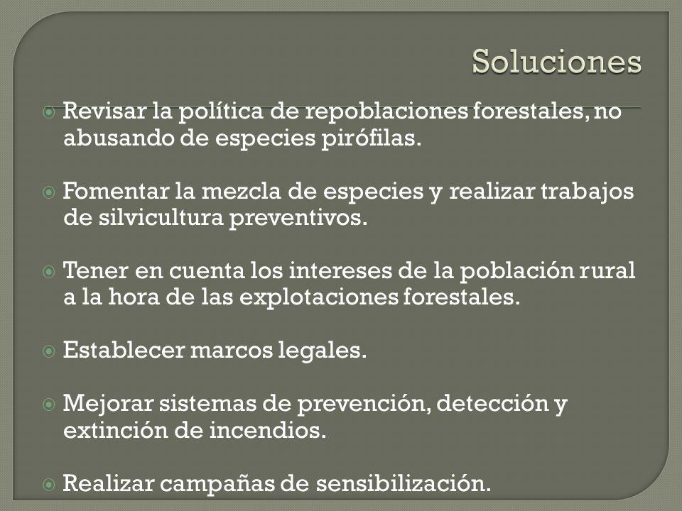 Soluciones Revisar la política de repoblaciones forestales, no abusando de especies pirófilas.