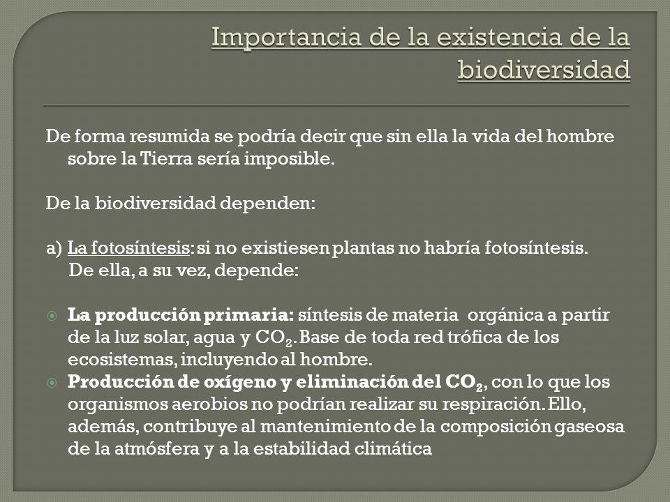 Importancia de la existencia de la biodiversidad