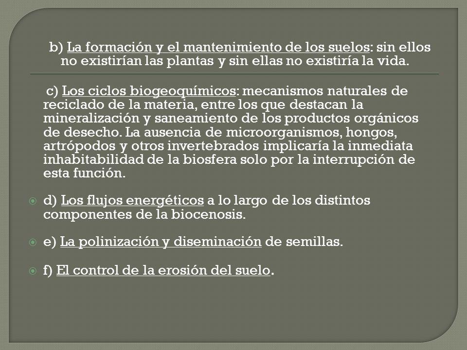 b) La formación y el mantenimiento de los suelos: sin ellos no existirían las plantas y sin ellas no existiría la vida.