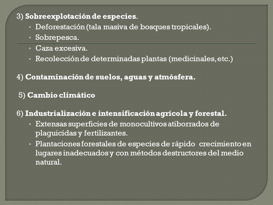3) Sobreexplotación de especies.