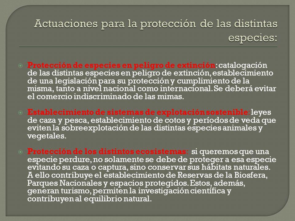 Actuaciones para la protección de las distintas especies: