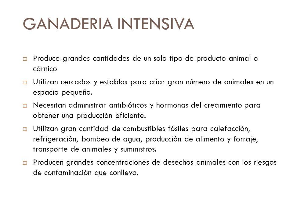 GANADERIA INTENSIVAProduce grandes cantidades de un solo tipo de producto animal o cárnico.