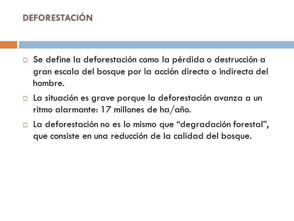 DEFORESTACIÓN Se define la deforestación como la pérdida o destrucción a gran escala del bosque por la acción directa o indirecta del hombre.