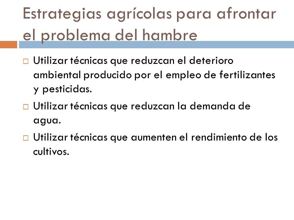 Estrategias agrícolas para afrontar el problema del hambre