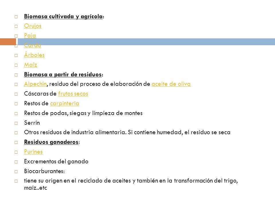 Biomasa cultivada y agrícola: