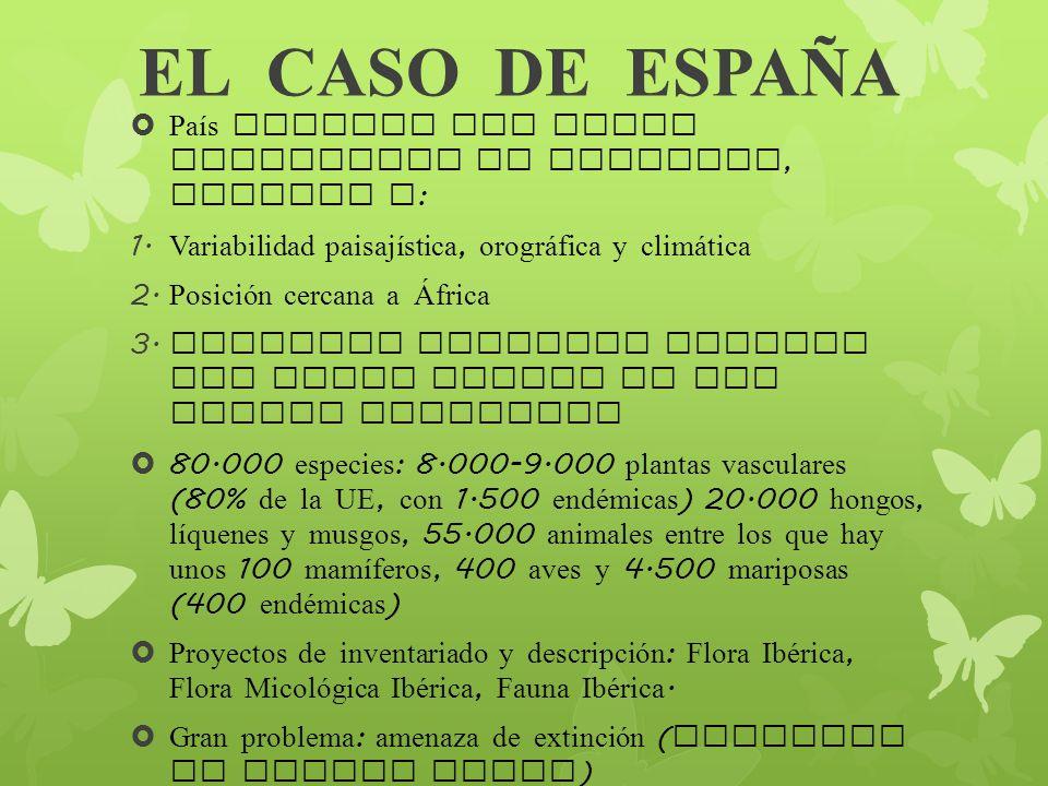 EL CASO DE ESPAÑA País europeo con mayor diversidad de especies, gracias a: Variabilidad paisajística, orográfica y climática.