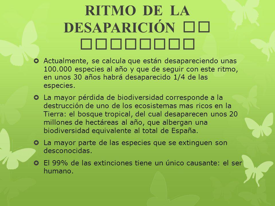 RITMO DE LA DESAPARICIÓN DE ESPECIES