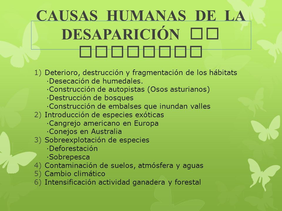CAUSAS HUMANAS DE LA DESAPARICIÓN DE ESPECIES
