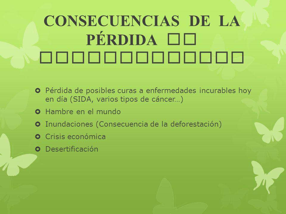 CONSECUENCIAS DE LA PÉRDIDA DE BIODIVERSIDAD