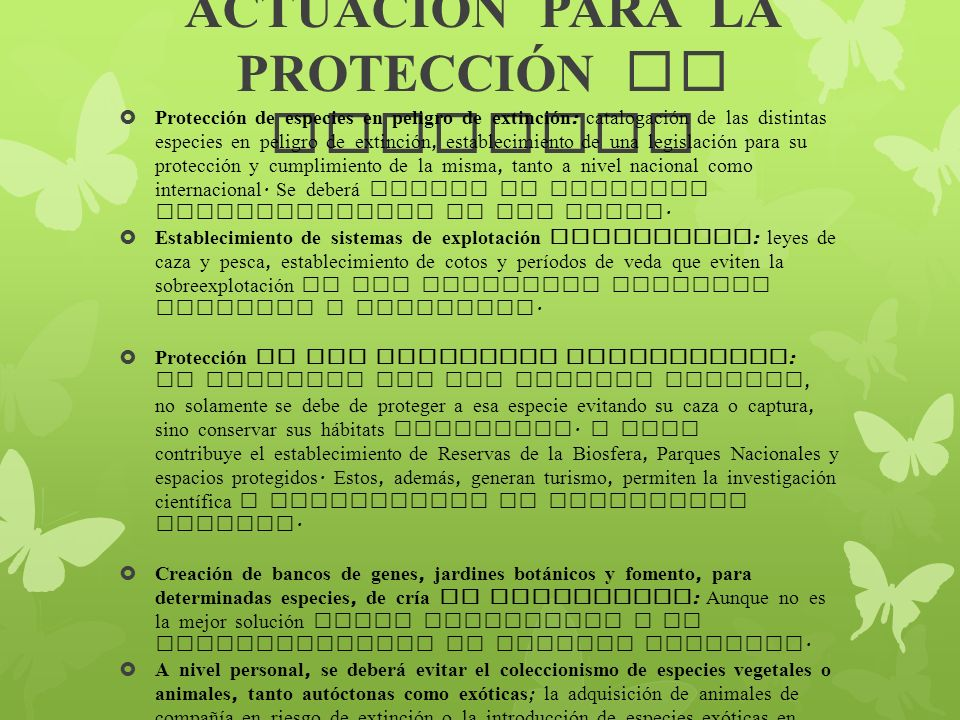 ACTUACIÓN PARA LA PROTECCIÓN DE ESPECIES