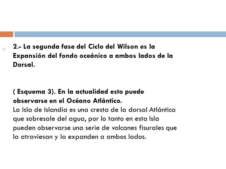 2.- La segunda fase del Ciclo del Wilson es la Expansión del fondo oceánico a ambos lados de la Dorsal.