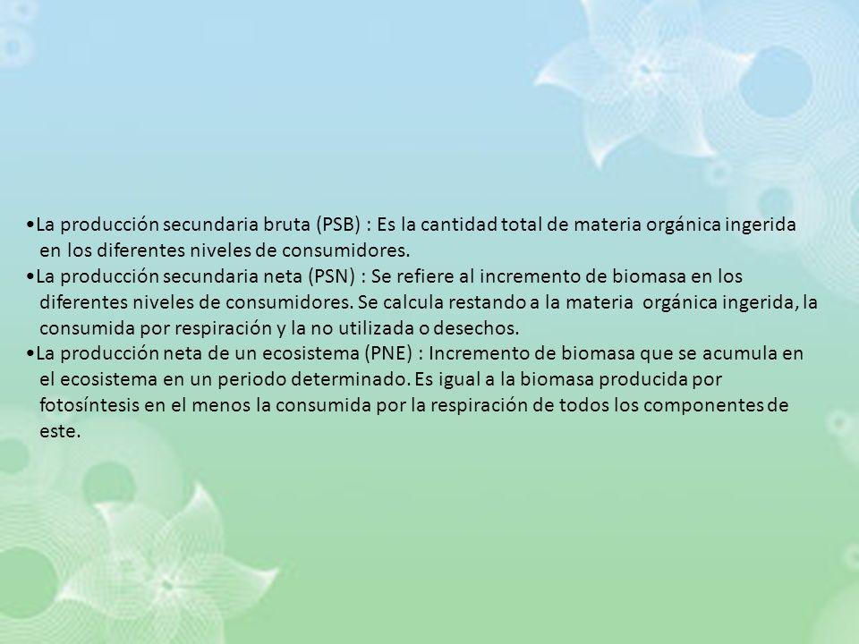 La producción secundaria bruta (PSB) : Es la cantidad total de materia orgánica ingerida