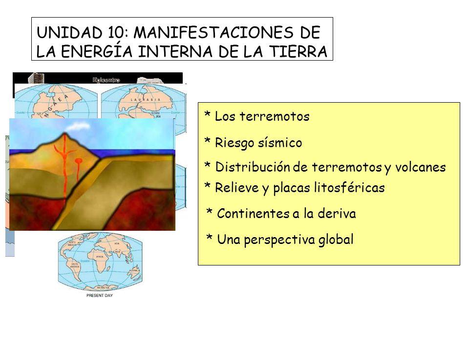 UNIDAD 10: MANIFESTACIONES DE LA ENERGÍA INTERNA DE LA TIERRA