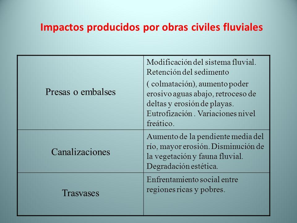 Impactos producidos por obras civiles fluviales
