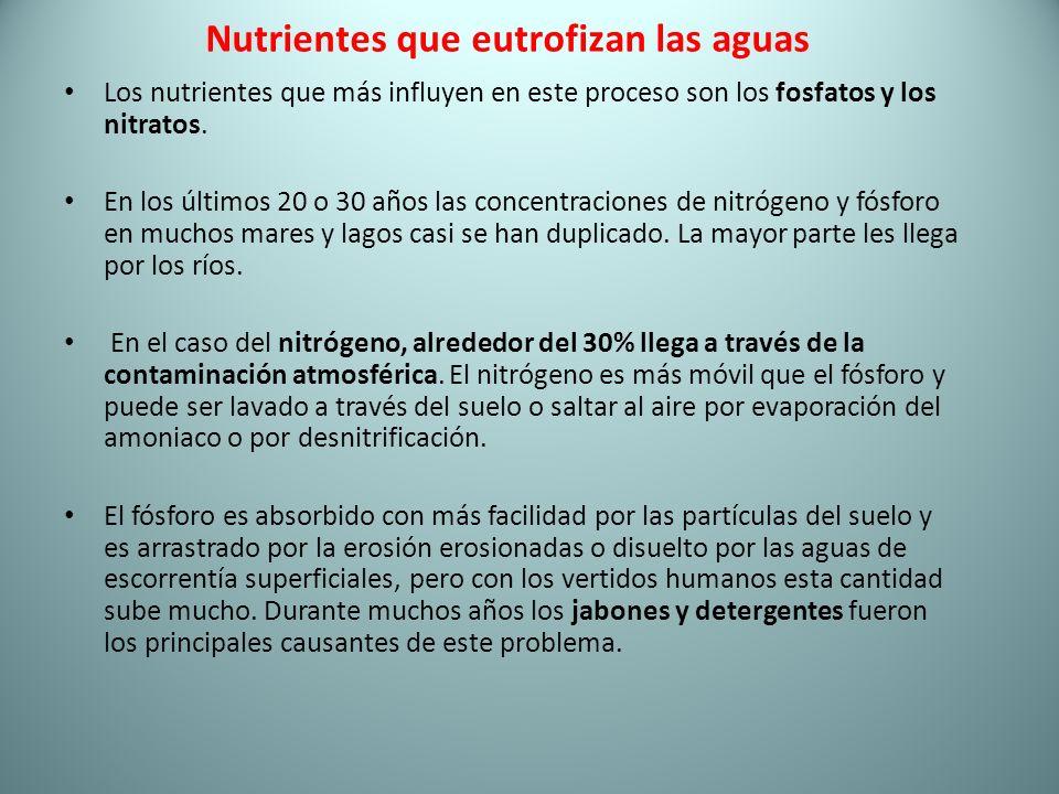 Nutrientes que eutrofizan las aguas