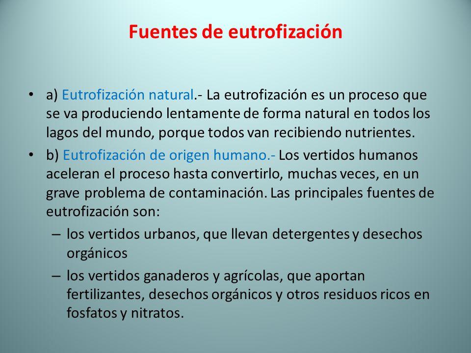 Fuentes de eutrofización