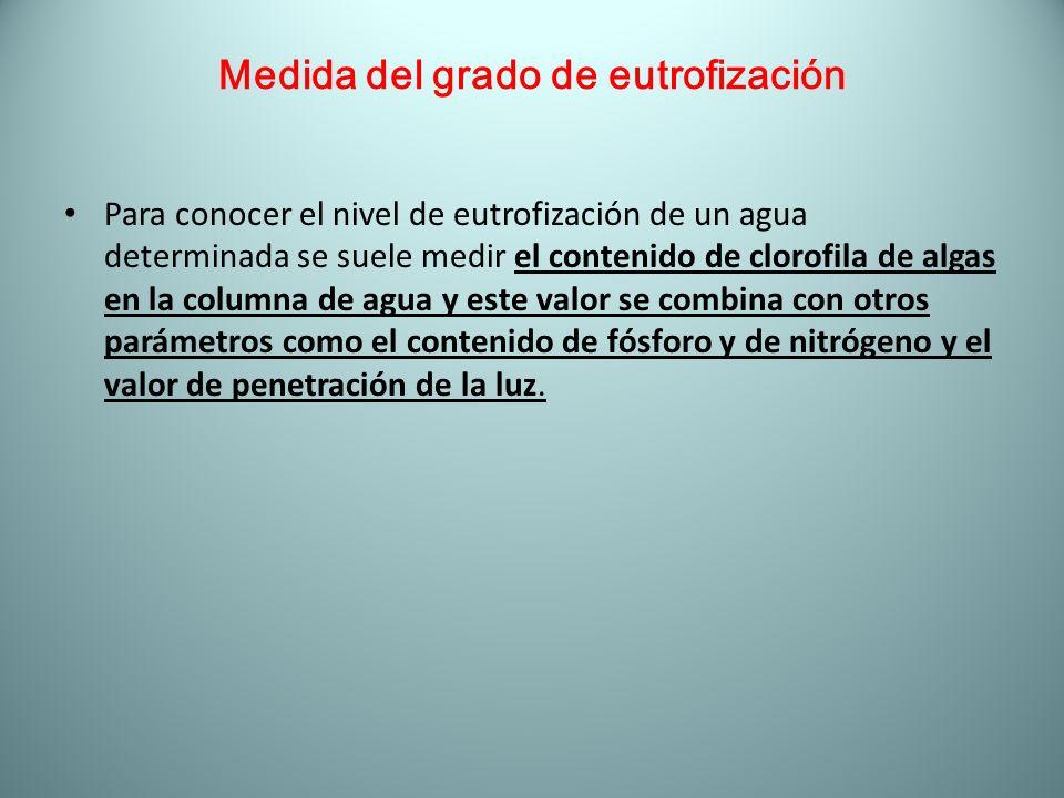 Medida del grado de eutrofización