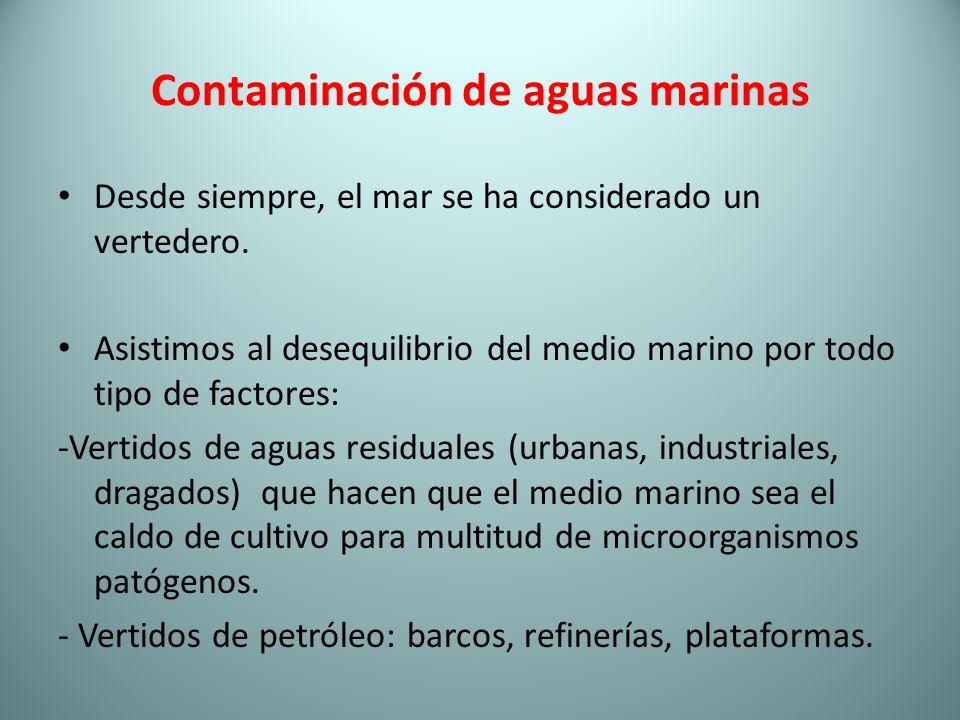 Contaminación de aguas marinas