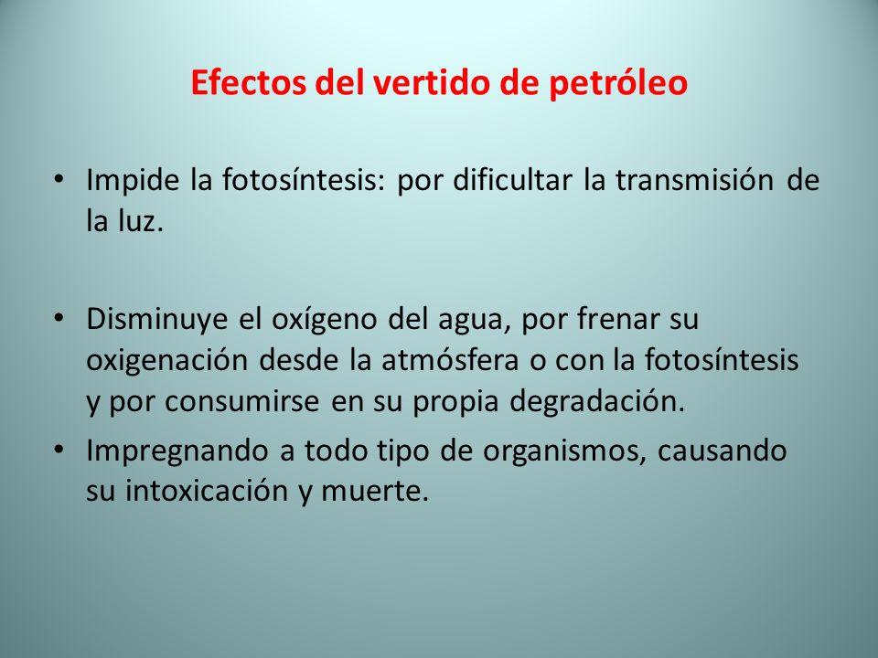 Efectos del vertido de petróleo
