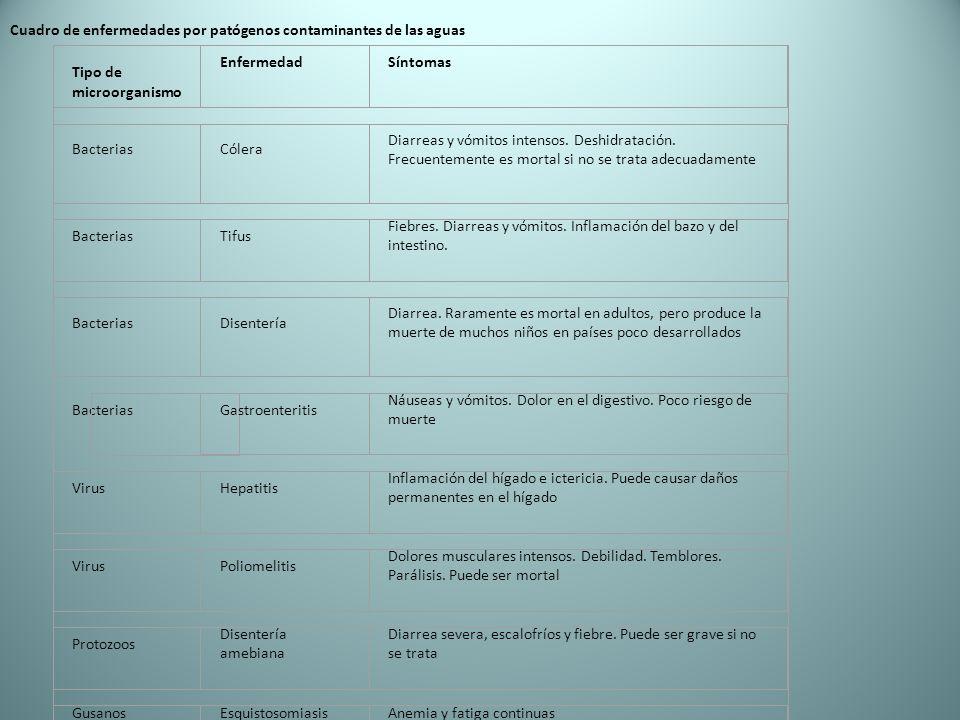 Cuadro de enfermedades por patógenos contaminantes de las aguas