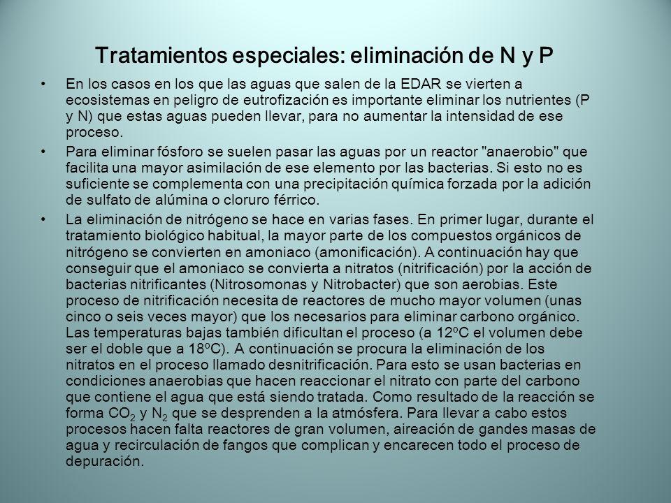 Tratamientos especiales: eliminación de N y P