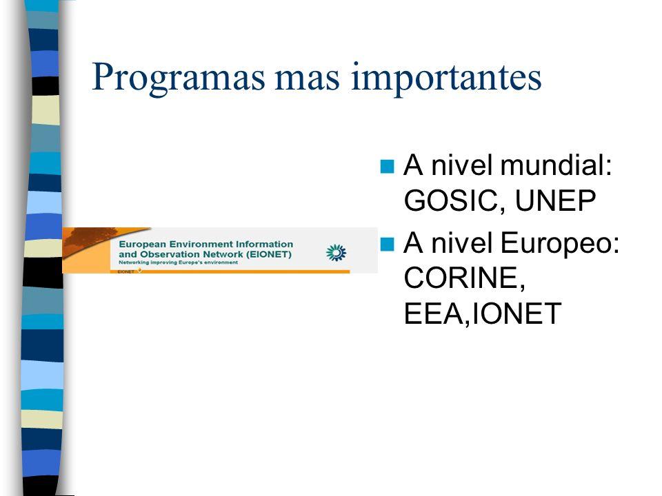 Programas mas importantes