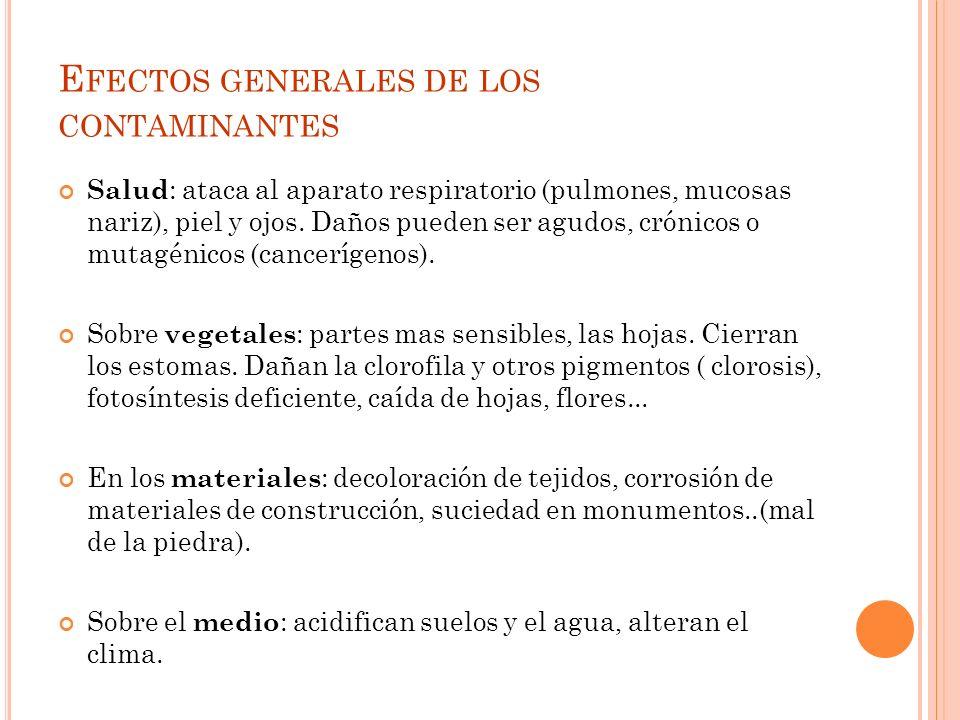 Efectos generales de los contaminantes