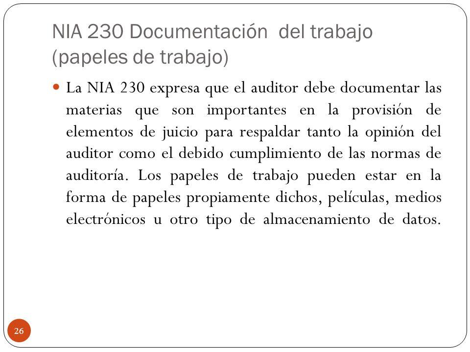 NIA 230 Documentación del trabajo (papeles de trabajo)